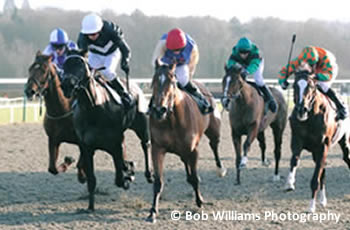 Desperation winning at Lingfield